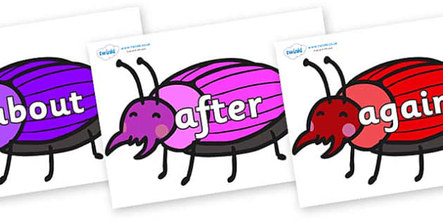 KS1 Keywords on Beetles - KS1, CLL, Communication language and literacy, Display, Key words, high frequency words, foundation stage literacy, DfES Letters and Sounds, Letters and Sounds, spelling