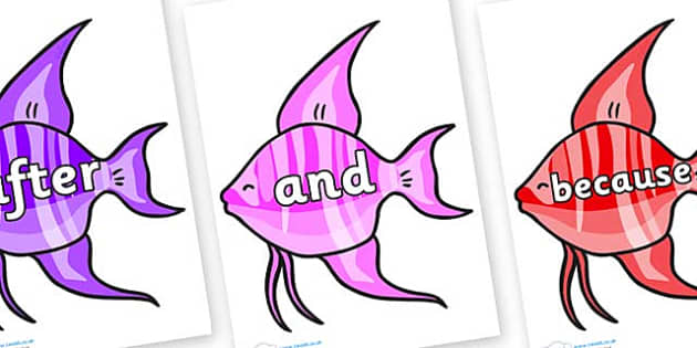 Connectives on Angelfish - Connectives, VCOP, connective resources, connectives display words, connective displays