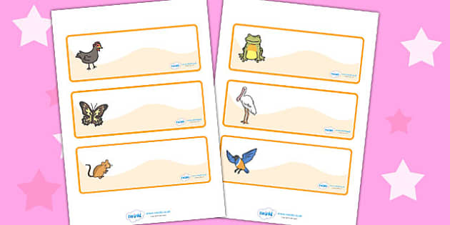 Story Drawer Peg Name Labels to Support Teaching on Handa's Hen - label, visual, sticker