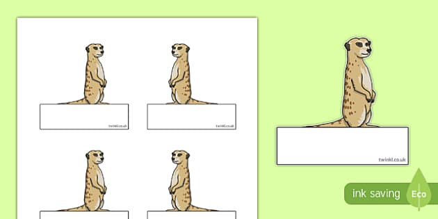 Meerkat Themed Self Registration Labels - meerkat, safari, self registration, labels, display