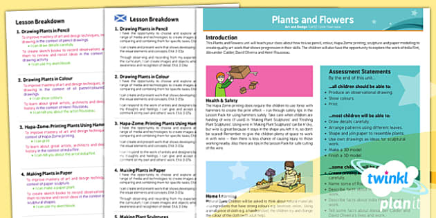 PlanIt - Art UKS2 - Plants and Flowers Planning Overview CfE - planit, art, planning, overview, cfe