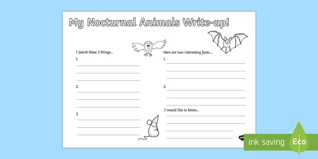 Nocturnal Animals Write Up Worksheet - nocturnal animals, write up, worksheet