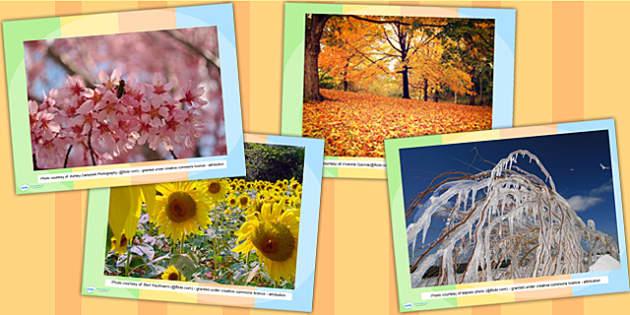 Four Seasons Display Photo PowerPoint - seasons, weather, photos