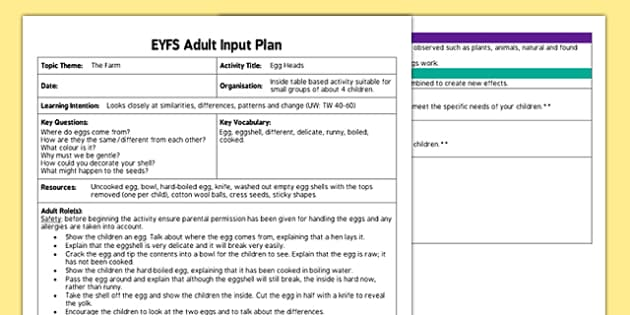 Egg Heads EYFS Adult Input Plan - plan, lesson plans, adult led