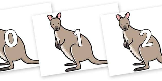 Numbers 0-31 on Wallaby - 0-31, foundation stage numeracy, Number recognition, Number flashcards, counting, number frieze, Display numbers, number posters