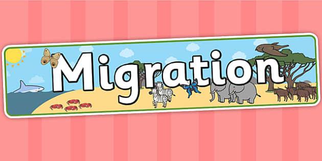 Migration Display Banner - migration, geography, banner, header