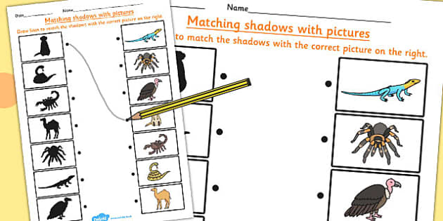 Desert Animals Shadow Matching Worksheet - desert, animals, match