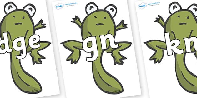 Silent Letters on Froglets - Silent Letters, silent letter, letter blend, consonant, consonants, digraph, trigraph, A-Z letters, literacy, alphabet, letters, alternative sounds