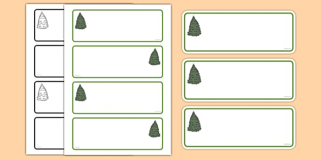 Fir Tree Themed Editable Drawer-Peg-Name Labels (Colourful) - Themed Classroom Label Templates, Resource Labels, Name Labels, Editable Labels, Drawer Labels, Coat Peg Labels, Peg Label, KS1 Labels, Foundation Labels, Foundation Stage Labels, Teaching