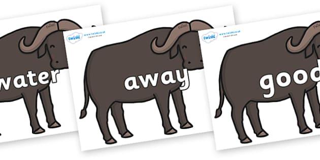 Next 200 Common Words on Buffalos - Next 200 Common Words on  - DfES Letters and Sounds, Letters and Sounds, Letters and sounds words, Common words, 200 common words