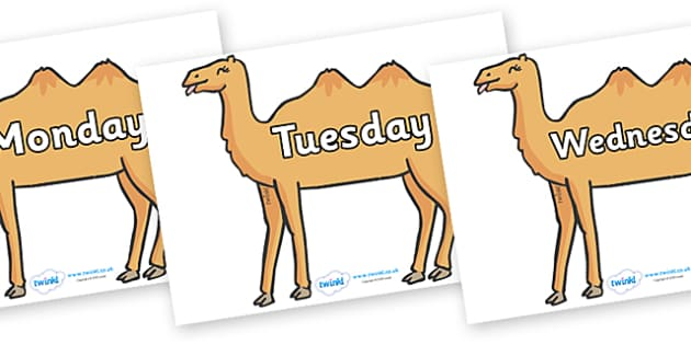 Days of the Week on Camels - Days of the Week, Weeks poster, week, display, poster, frieze, Days, Day, Monday, Tuesday, Wednesday, Thursday, Friday, Saturday, Sunday