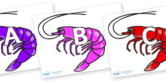A-Z Alphabet on Shrimps - A-Z, A4, display, Alphabet frieze, Display letters, Letter posters, A-Z letters, Alphabet flashcards