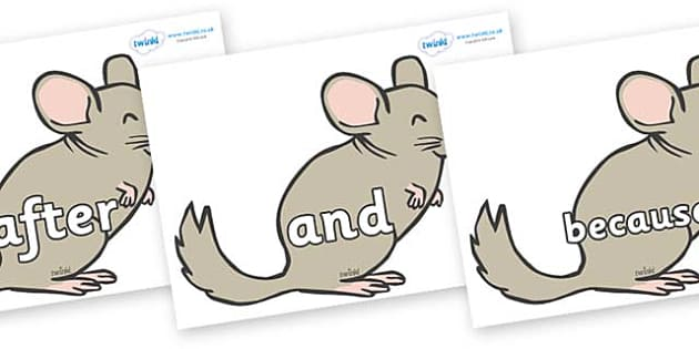 Connectives on Chinchillas - Connectives, VCOP, connective resources, connectives display words, connective displays