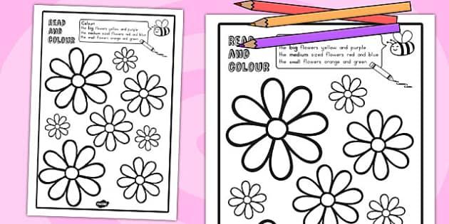 Flower Read and Colour Worksheet - australia, flower, colour
