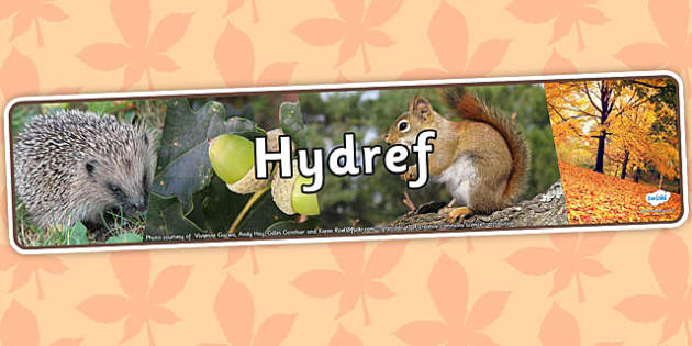 Autumn Photo Display Banner Welsh Translation - hydref, header