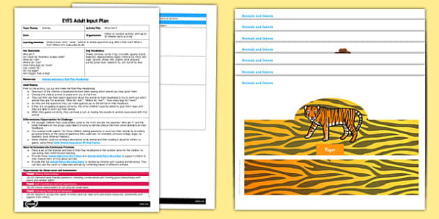 EYFS What am I Adult Input Plan and Resource Pack - EYFS, Early Years planning, adult led, speaking, C&L, questions, understanding, zoo, jungle, safari