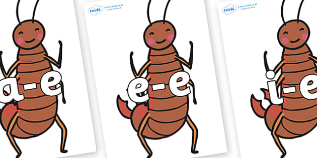 Modifying E Letters on Earwigs - Modifying E, letters, modify, Phase 5, Phase five, alternative spellings for phonemes, DfES letters and Sounds