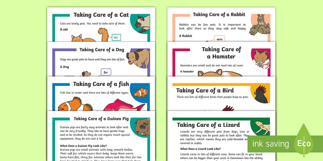Pets Primary Resources, pet, animal, living things, cat, dog