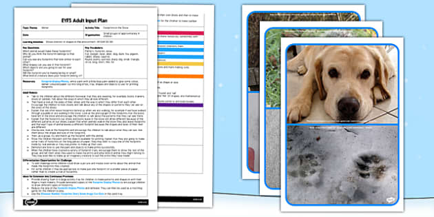 Footprints in the Snow EYFS Adult Input Plan and Resource Pack - lesson plan, snow