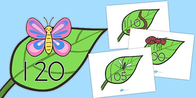 Numbers 100-120 on Minibeasts - australia, numbers, minibeasts