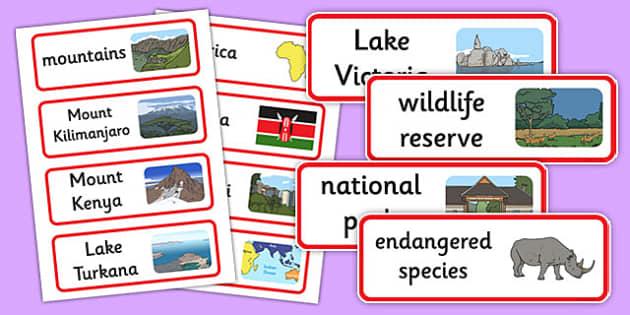 Sensational Safari Word Cards - sensational safari, safari, word cards, word, cards