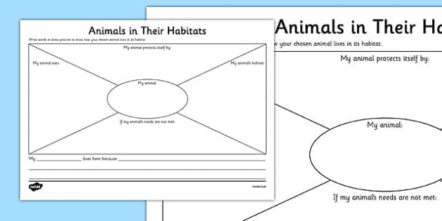 Animals in Their Habitats Worksheet Science Year 1 Habitats – Animals and Their Habitats Worksheets Kindergarten