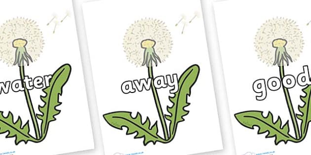 Next 200 Common Words on Dandelion Seeds - Next 200 Common Words on  - DfES Letters and Sounds, Letters and Sounds, Letters and sounds words, Common words, 200 common words