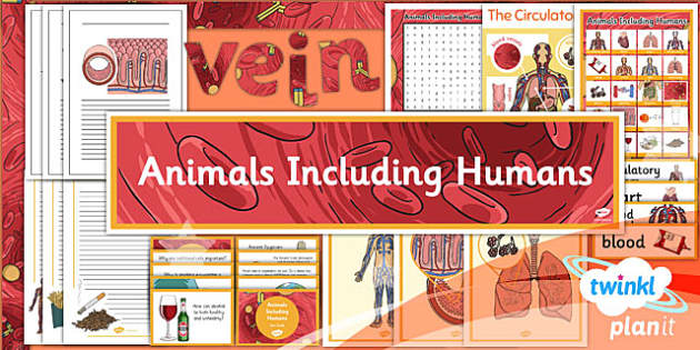 PlanIt - Science Year 6 - Animals Including Humans Unit Additional Resources