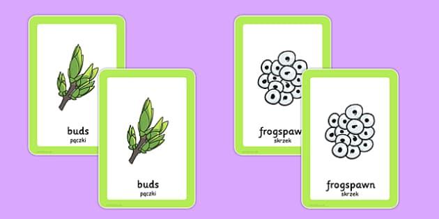 Spring Pairs Matching Game Polish Translation - polish, games, match, activity, activities