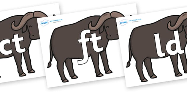 Final Letter Blends on Buffalos - Final Letters, final letter, letter blend, letter blends, consonant, consonants, digraph, trigraph, literacy, alphabet, letters, foundation stage literacy