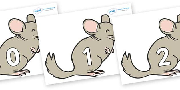 Numbers 0-50 on Chinchillas - 0-50, foundation stage numeracy, Number recognition, Number flashcards, counting, number frieze, Display numbers, number posters