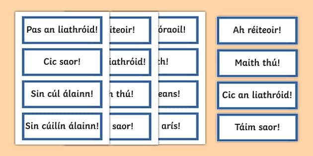 GAA Phrases Word Cards - PE, gaeilge, seachtain na gaeilge, GAA