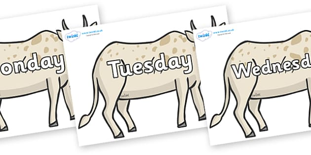 Days of the Week on African Ox - Days of the Week, Weeks poster, week, display, poster, frieze, Days, Day, Monday, Tuesday, Wednesday, Thursday, Friday, Saturday, Sunday
