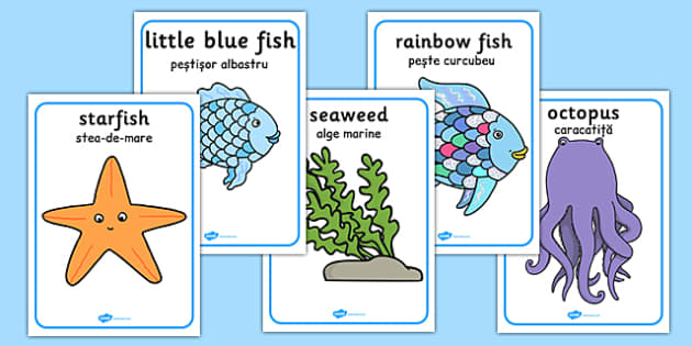 The Rainbow Fish Movement Activity Picture Cards Romanian Translation - romanian, rainbow fish, movement, activity