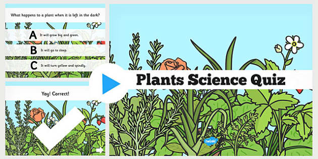 Plants Science PowerPoint Quiz - plants, science, powerpoint