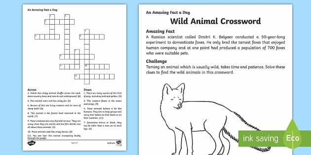 Wild Animal Crossword - Amazing Fact Of The Day, activity sheets, powerpoint, starter, morning activity, December, animal cr