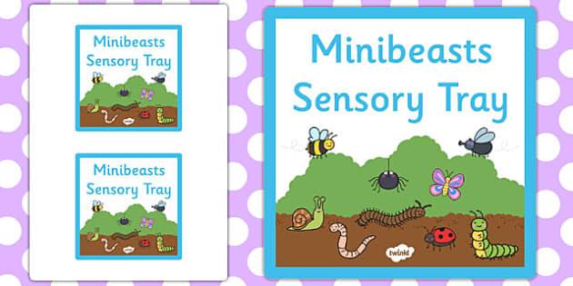Minibeasts Themed Sensory Deep Tray Label - tray label, minibeast