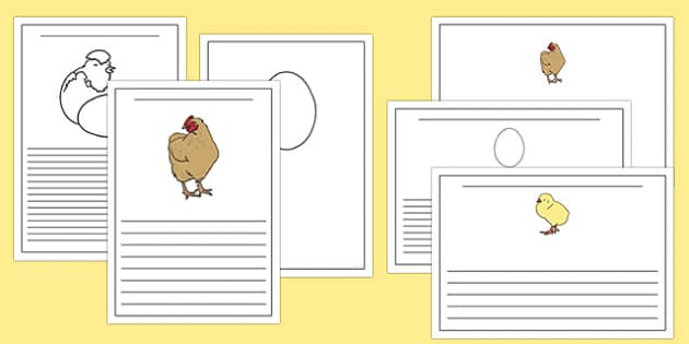 Hen Life Cycle Writing Frames - writing frame, frame, writing, hen, hen life cycle, hen writing frames, the life cycle of a hen, writing aid, writing template, template, literacy