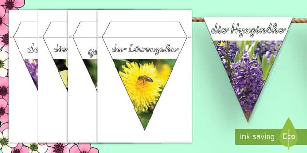 Frühlingsblumen Fotos: Fahnengirlande für die Klassenraumgestaltung - Frühling, Spring, Blumen, Pflanzen, Frühlingsblumen, Frühblüher ,German.