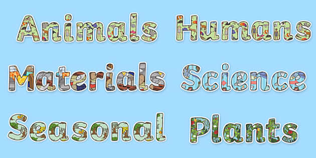 Year 1 Science Display Lettering Resource Pack - year 1, science, display lettering, display, letter, Science lettering, Science display, Science display lettering