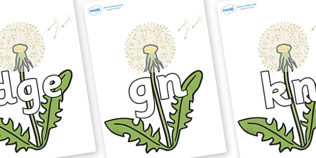 Silent Letters on Dandelion-Seeds - Silent Letters, silent letter, letter blend, consonant, consonants, digraph, trigraph, A-Z letters, literacy, alphabet, letters, alternative sounds
