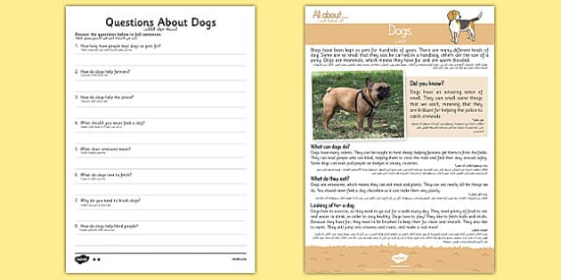 Dogs Reading Comprehension Arabic Translation - arabic, Reading comprehension, dog, find, locate, read, comprehend, fact, title, fact file, information, question