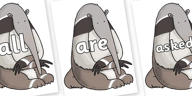 Tricky Words on Anteater to Support Teaching on The Great Pet Sale - Tricky words, DfES Letters and Sounds, Letters and sounds, display, words