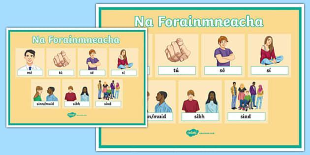 Forainmneacha Display Posters-Irish