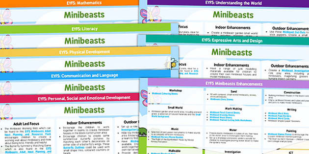 EYFS Minibeast Lesson Plan and Enhancement Ideas - lesson plan, EYFS, lesson idea