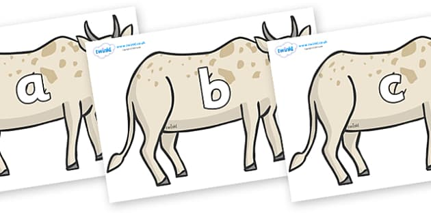 Phase 2 Phonemes on African Ox - Phonemes, phoneme, Phase 2, Phase two, Foundation, Literacy, Letters and Sounds, DfES, display