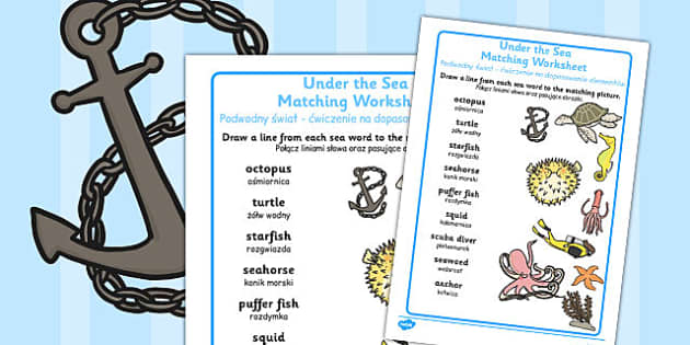 Under the Sea Differentiated Word and Picture Matching Worksheets Polish Translation