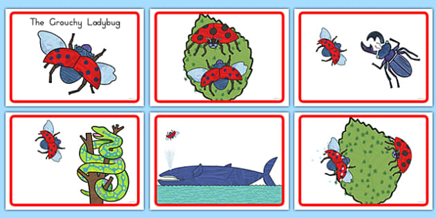 The Grouchy Ladybug Story Sequencing - usa, america, the grouchy ladybug, story sequencing