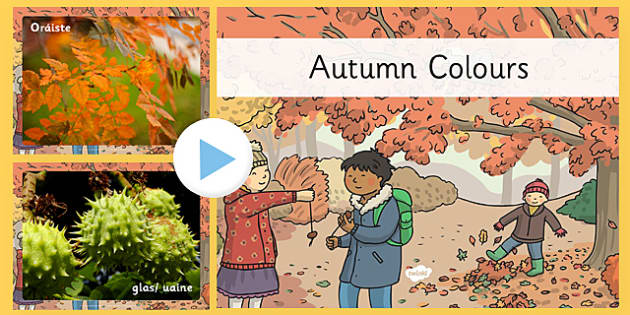 Autumn Colours Photo PowerPoint Gaeilge - gaeilge, autumn, colours, photo, powerpoint