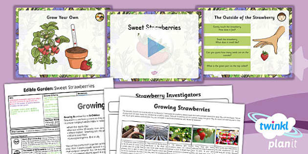PlanIt - DT LKS2 - Edible Garden Lesson 3: Sweet Strawberries Lesson Pack
